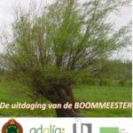 De uitdaging van de BOOMMEESTER  –  Wilgpooten voor het klimaat !