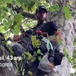 FRANCE : le combat d'un homme pour protéger le patrimoine arboré