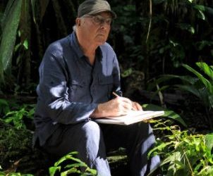Nous les arbres, une vidéo de Francis Hallé